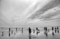 Landscape Photography Fine Art Del Mar Beach Dog by AsqewCreative