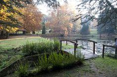 Vértes Erdő Zrt. a Vértes hegység, a Gerecse, a Császári-dombság és a Bakonyalja tájegységek jelentős részének erdőterület kezelője.
