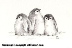 Emperor Penguin Chicks -no.2 by Wildsunart.deviantart.com on @deviantART