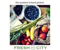 #FreshCity #boston
