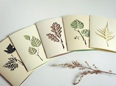 Botanical papercut greetings cards - set of 5 handcut cards - 4 x 6 inches
