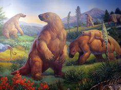 Giant Ground Sloths lived in North and South America and went extinct about 10,000 years ago. These would be so cool to still have around!