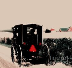Living Amish (Desiree Paquette)