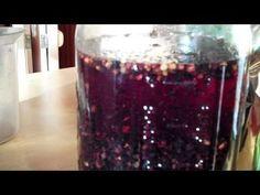 Easy Herbal Medicine - Making Elder Berry Tincture (good immune booster for winter!) www.onedoterracommunity.com https://www.facebook.com/#!/OneDoterraCommunity
