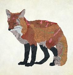 map fox map