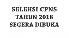 Seleksi CPNS 2018 Segera Dibuka, Khusus Formasi Kabupaten/Kota, Siapkan Berkas dari Sekarang!