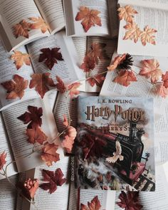 """Harry Potter Illustrated is out in the wild now.  It's so pretty to gaze at and full of over 100 beautiful full color illustrations. This makes me even…"""