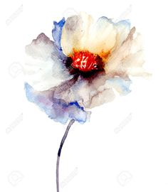 watercolour flowers - Iskanje Google