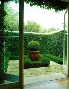 Garden & focal points can be simple as opposed to a water feature, etc...Create one using a beautiful pot and the repetition of the same greenery. Hierarchy & various levels are key.