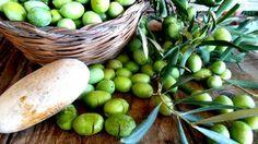 Olive verdi in salamoia. Ottimo metodo di conservazione delle olive anche per anni. Ricetta semplice. Risultato assicurato.