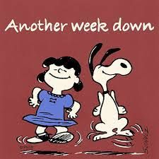 Charlie Brown Quotes, Charlie Brown Y Snoopy, Peanuts Cartoon, Peanuts Snoopy, Snoopy Cartoon, Its Friday Quotes, Friday Humor, Work Memes, Work Humor