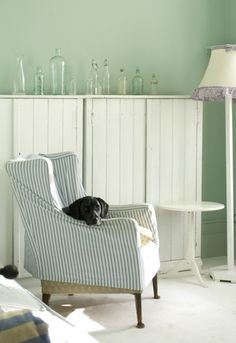 F & B Teresa's green. Our old furniture was the blue ticking like the slipcover, love the dog, like ours.