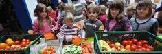 Schoolgruiten - Groente + Fruiten = Gruiten!