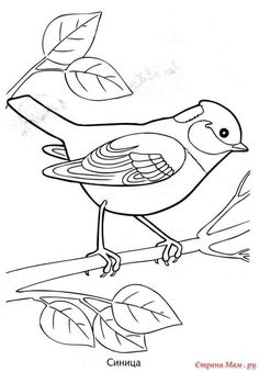 Ideas Embroidery Designs For Girls Coloring Pages Art Drawings For Kids, Outline Drawings, Bird Drawings, Colorful Drawings, Animal Drawings, Cute Drawings, Bird Coloring Pages, Coloring Pages For Girls, Coloring Books