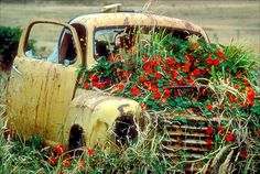15 Best Ideas Old Cars Vintage Abandoned Yard Art Vintage Pickup Trucks, Vintage Cars, Antique Cars, 4x4 Trucks, Diesel Trucks, Lifted Trucks, Ford Trucks, Flower Truck, Flower Car