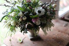 paradis express: fleurs