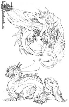 23 Ideas Art Reference Fantasy For 2019 Animal Sketches, Animal Drawings, Art Sketches, Art Drawings, Dragon Drawings, Drawing Art, Dragon Medieval, Dragon Illustration, Dragon Sketch