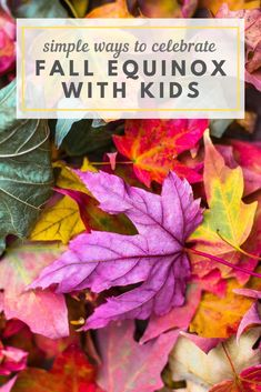 Simple Ways To Celebrate the Fall Equinox with Kids — Boston Mamas Autumn Activities, Activities For Kids, Autumnal Equinox Celebration, Fall Crafts, Crafts For Kids, Diy Crafts, Mountain Rose Herbs, Autumn Theme, Fall Halloween