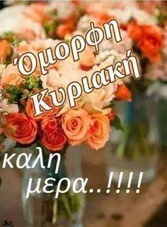 Beautiful Pink Roses, Blondies, Good Morning, Beautiful Pictures, Mom, Birthday, Greek, Buen Dia, Birthdays
