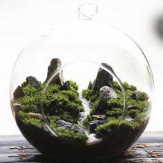 『山谷』苔藓微景观 苔藓生态瓶 小品 植物礼物 高端大气上档次