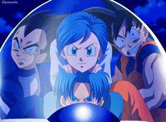 Bulma, Vegeta, Trunks, and Goku