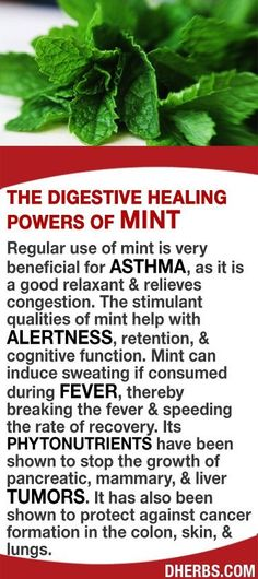 Regular use of mint is very beneficial for asthma, as it is a good relaxant & relieves congestion. The stimulant qualities of mint help with alertness, retention, & cognitive function. Mint can induce sweating if consumed during fever, thereby breaking th Health Facts, Health And Nutrition, Health And Wellness, Health Tips, Nutrition Store, Health Fitness, Natural Medicine, Herbal Medicine, Herbal Remedies