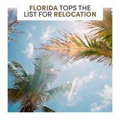 Sunshine State, Florida, Live, Videos, Beach, Water, Blog, Check, Outdoor