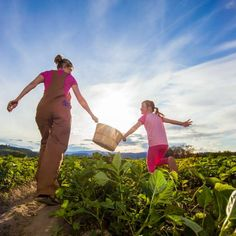 Farm to Table Tours in Kelowna | Locally Grown Food