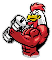 muscle rooster holding the barbell - Red Cock 2017