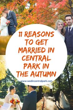 1) Number one has to be the colors. When it gets colder and the leaves change color, Central Park looks completely different. The lush greens we know and love are gone and there is a vast array of …