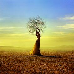Anna Shakina, beautiful work