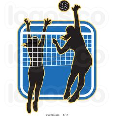 volleyball is fun