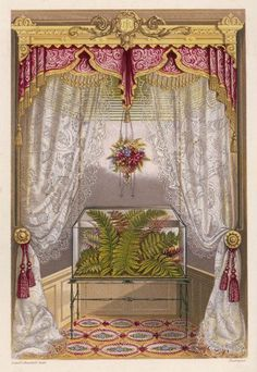 Inch Print - High quality prints (other products available) - Wardian case containing ferns used as window decoration. - Image supplied by Mary Evans Prints Online - Photograph printed in the USA Victorian Curtains, Victorian Windows, Victorian Era, Fine Art Prints, Framed Prints, Canvas Prints, Victorian Window Treatments, Jeanne D'arc Living, Pelmets