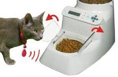 smart feeder http://www.bestchickencurryrecipe.co.uk/sweet-potato-bhaji/