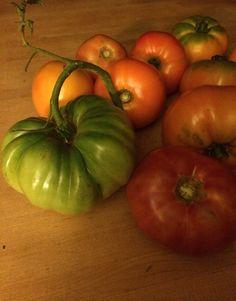 Heirloom tomatoes at Deepwoods Farm