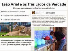 Mural Animal: Leão Ariel e os Três Lados da Verdade