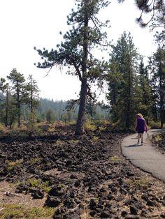 Lava Cast Forest near Bend, Oregon