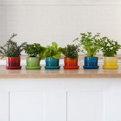 Le Creuset Herb Planter With Tray 14cm   Yuppiechef