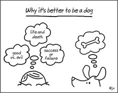 Why It's Better to Be a Dog