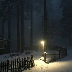 Night Aesthetic, Nature Aesthetic, Looks Dark, Dark Paradise, Christmas Aesthetic, Winter Christmas, Xmas, Pretty Pictures, Aesthetic Pictures