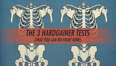 """Have you ever wondered whether you're a """"hardgainer"""" or not? What your muscle-building potential might be? How much of an ectomorph you are? How yourphysique might look after gaining 10, 20 or even 40 pounds of muscle? These three quizzes should help you figure all of that out, and you can do it right now …"""