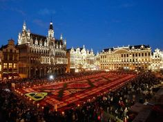 Dursun Aydemir/Anadolu Agency/Getty Images-Brussels - Begonia Carpet