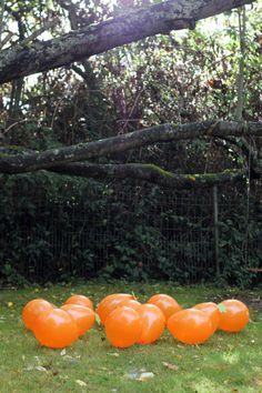 Poppin' Pumpkins