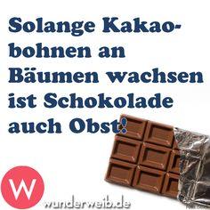 Solange Kakaobohnen an Bäumen wachsen, ist Schokolade auch Obst! #Spruchdestages #wunderweib