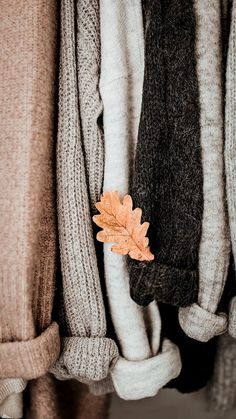 Autumn Aesthetic, Brown Aesthetic, Christmas Aesthetic, Aesthetic Photo, Photography Ideas At Home, Autumn Photography, Looks Style, My Style, Autumn Cozy