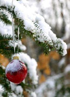 tis the season......