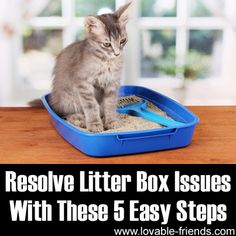 Please Share This Page: Photo – © Africa Studio – Fotolia.com We found a great article about taking care of the cat's litter box. The link is at the end, but first, our comments and additional tips. Ever wonder why domesticated cats had to use cat litter? Well, cats are naturally clean creatures and they …
