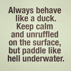 proud to sound and behave like a Duck..Lol