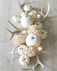 white pumpkins + antlers + hydrangeas