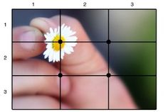 Photography Rule of thirds grid layout flower picture - Juna Photography Ideas At Home, Photography Rules, Landscape Photography Tips, Photography Lessons, Photography Tutorials, Nature Photography, Scenic Photography, Aerial Photography, Night Photography
